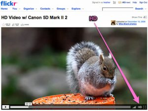Flickr Video Now Available to All