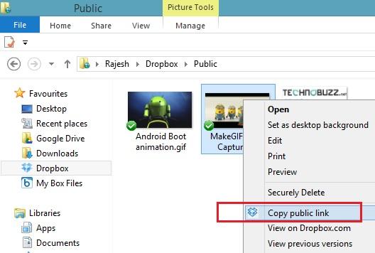 Dropbox Public Link