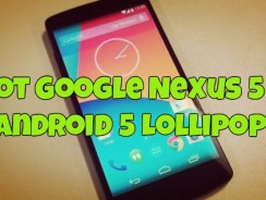 Root Google Nexus 5 on Android 5 Lollipop with CF Auto Root