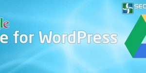 Backup Your Full WordPress Site to Google Drive