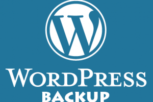 5 Best Wordpress Backup Plugins
