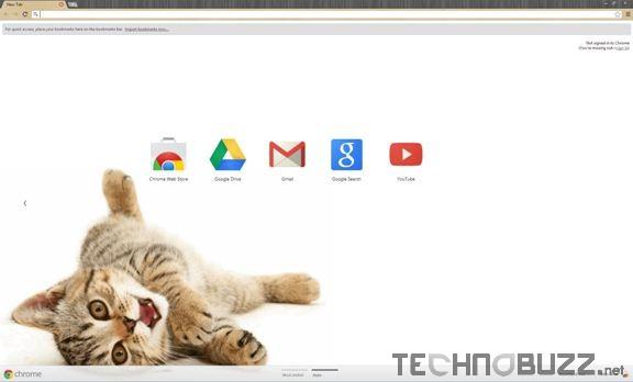 Cute Kitten 2 Theme