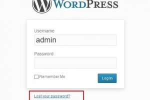 Lost Your Wordpress Password