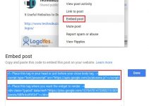 Google Plus Embed Post